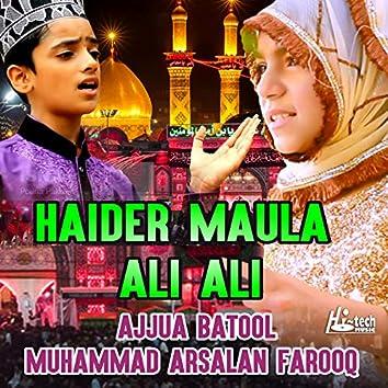 Haider Maula Ali Ali