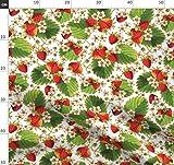 Botanisch, Erdbeeren, Illustration, Rot Weiß, Obst, Retro