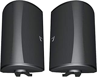 Definitive Technology AW 5500 Outdoor Speakers (Pair Black) Bundle