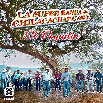 El Poquilin (In Live)