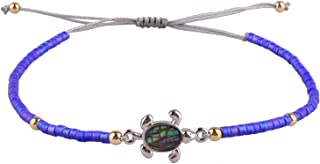 abalone shell turtle