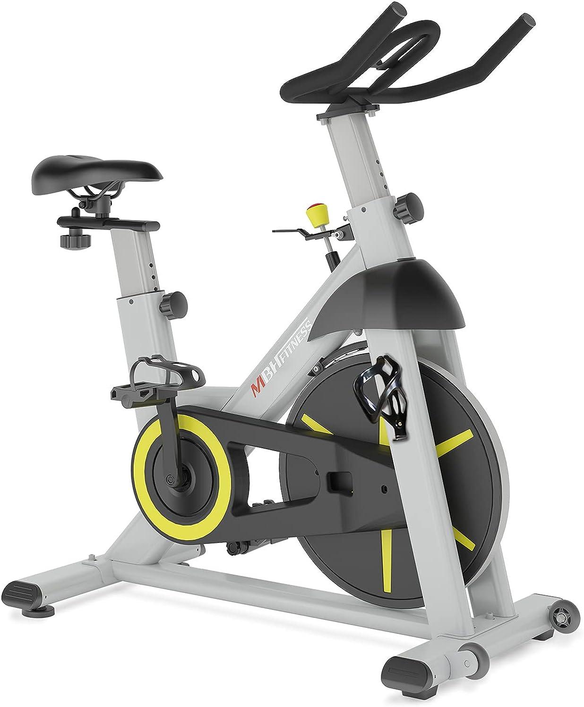 Best spin bike under $300