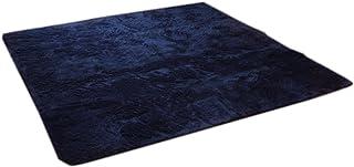 イケヒコ ラグ カーペット 2畳 無地 フィラメント糸 『フィリップ』 ネイビー 約185×185cm(ホットカーペット対応)