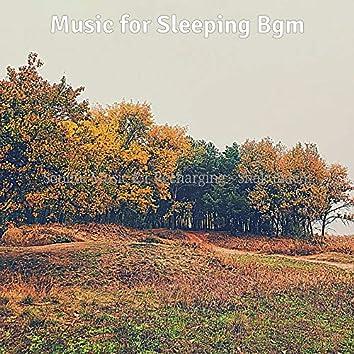 Soulful Music for Recharging - Shakuhachi