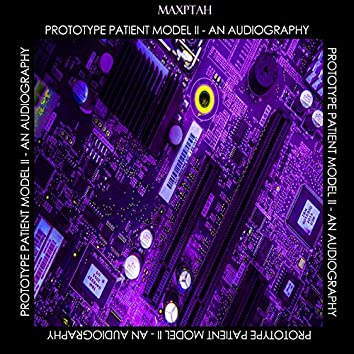 Prototype Patient Model II - An Audiography