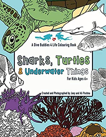 Sharks, Turtles & Underwater Things