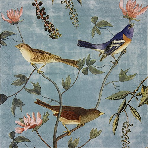 Paper Napkins, Alink Luncheon Party Napkins Serviettes Printed Birds 20 Count 2-Ply, 13 x 13 Inch