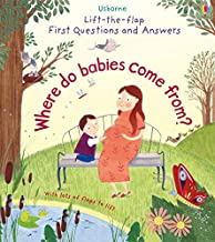 Where Do Babies Come From? (Lift the Flap First Questions and Answers)
