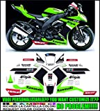 Emanuel & Co Kit adesivi Decal stikers Kawasaki ZX 10 R Ninja 2008 2010 Replica Tom Sykes WSBK...
