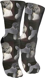 靴下 抗菌防臭 ソックス 白鳥のスポーツスポーツソックス、旅行&フライトソックス、絵画芸術面白いソックス30センチメートル長い靴下でプードル