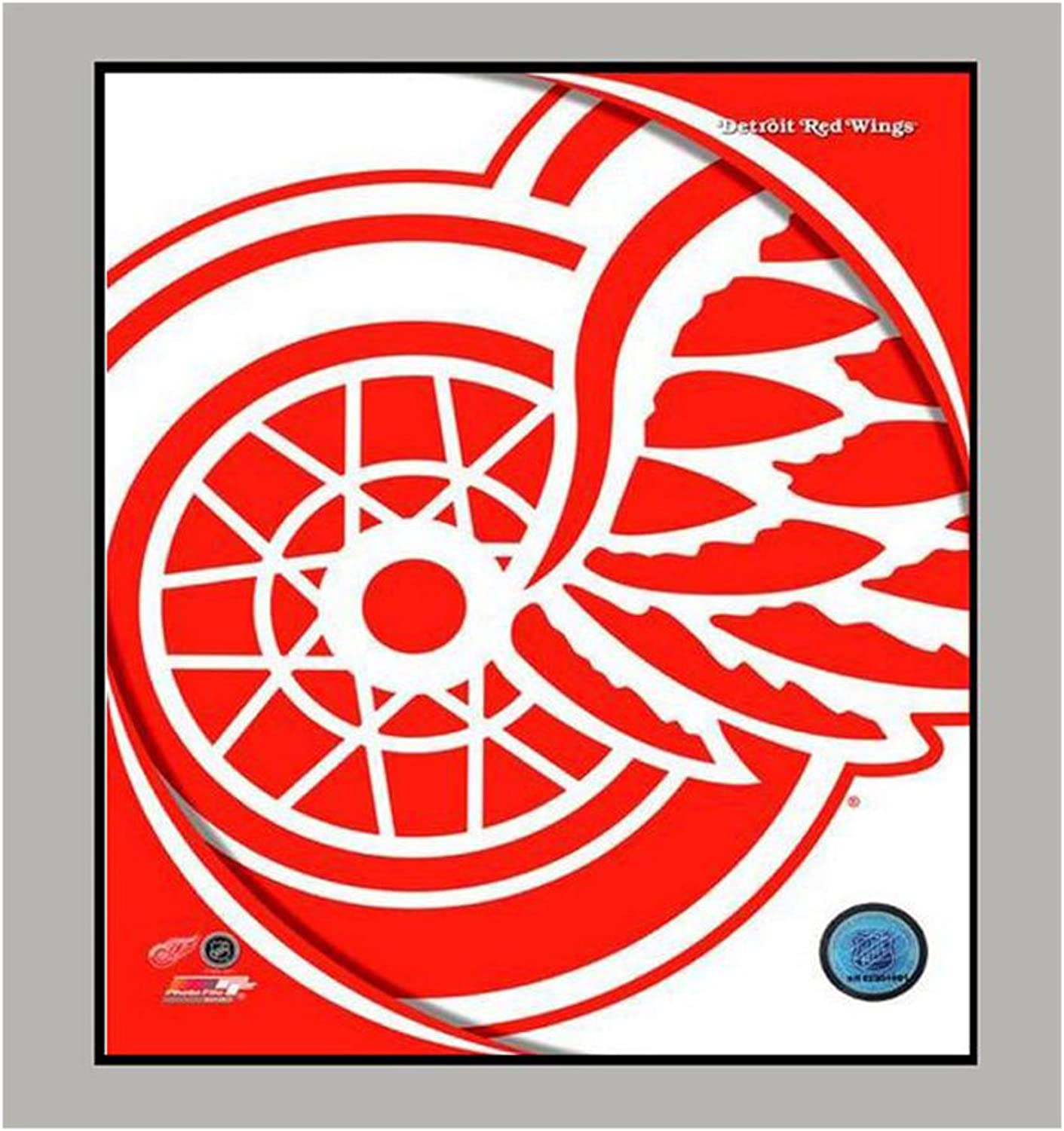 Encore Select 90422 NHL Detroit Red Wings Logo Mat, 11Inch by 14Inch