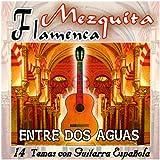 Limón De Nata Con Guitarra Española Flamenco