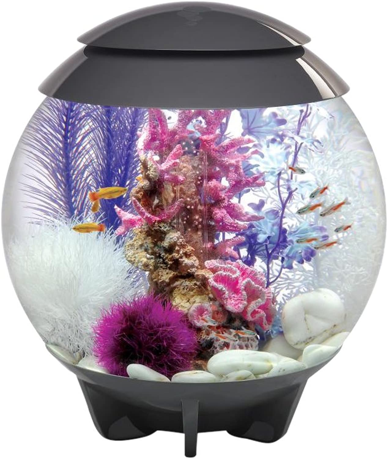 BiOrb Halo 30L Aquarium in Grey with Moonlight LED Lighting