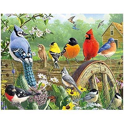 Diamond Painting Kits for Adults  Kids,Garden B...