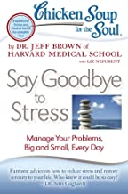 Chicken Soup for the Soul: Say Goodbye to Stress: Manage Your Problems, Big and Small, Every Day (English Edition)