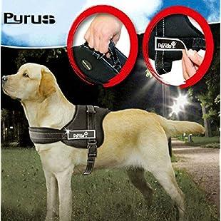 Dog Harness, PYRUS K8 No Pull Harness Dog Lead Padded Pet Walking Harness Heavy Duty for Dogs ( XL ):Kumagai-yutaka
