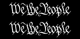 OwnTheAvenue x2 We The People Decal Sticker Vinyl 8