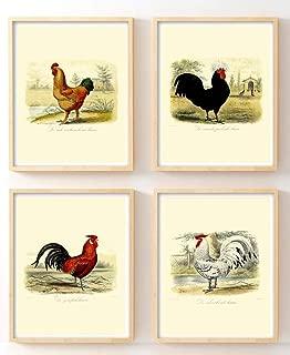 Best antique rooster prints Reviews