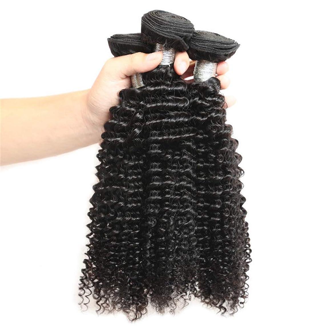 信頼できる味わう部BOBIDYEE 変態カーリーバージンヘア織りバンドル未処理の人間の毛髪延長用女性ナチュラルブラック(8インチ-26インチ)小さなカーリーウィッグ (色 : 黒, サイズ : 26 inch)