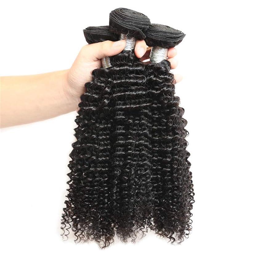はげスローりBOBIDYEE 変態カーリーバージンヘア織りバンドル未処理の人間の毛髪延長用女性ナチュラルブラック(8インチ-26インチ)小さなカーリーウィッグ (色 : 黒, サイズ : 26 inch)