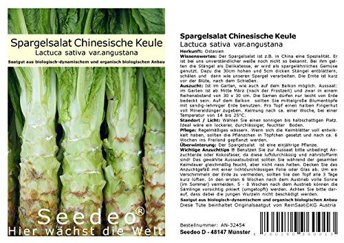 Seedeo® Spargelsalat Chinesische Keule (Lactuca sativa var.angustana) 100 Samen BIO