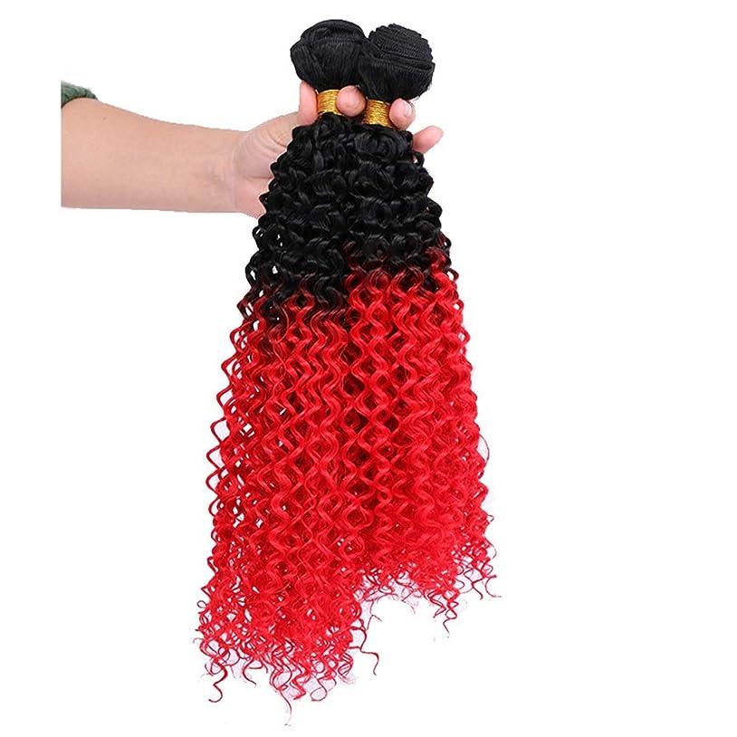 指導するアソシエイトタービンYrattary 女性用ウィッグブラックグラデーションレッドカーリーヘアー3バンドルシンセティックヘアエクステンションバンドルパーティーウィッグ (Color : レッド, サイズ : 22inch)
