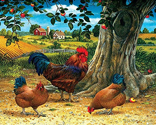 Puzzle 1000 piezas Pintura de regalo de arte de imagen de gallo animal puzzle 1000 piezas paisajes Rompecabezas de juguete de descompresión intelectual educativo divertido jue50x75cm(20x30inch)