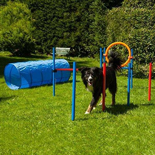 Dog Agility Set K2