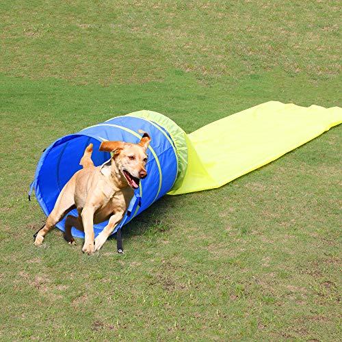 Túnel Abierto Pet Prime para Perros, túnel Abierto, túnel de Juego para Perros pequeños y medianos de 16 pies de Largo, Gran Curso de obstáculos para Mascotas, con Funda de Transporte