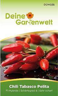 Chili Tabasco Pelita F1 | Samen für scharfe Chilis | Chilisamen | Tabascosamen