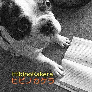 HibinoKakera Vol. 11
