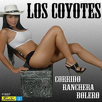 Corrido, Ranchera, Bolero