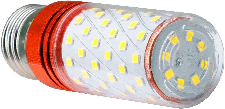Zhanying E27 Led-Lampe Licht Cornlight 80LED 1600LM 16 Watt Ersatz Ersatz 120 Watt Glühlampe SMD 2835 85-265 V (4 Pack) (Farbe   Gold, Gre   Kaltes Wei)
