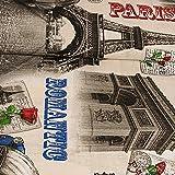 Dekostoff Paris Canvas - Preis gilt für 0,5 Meter