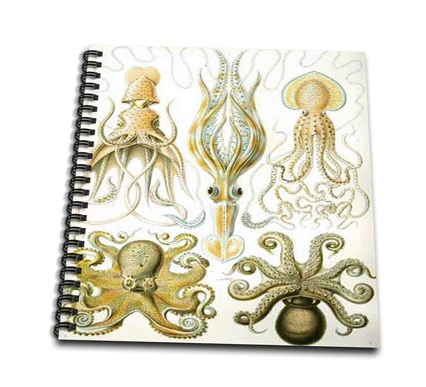 3dRose db_80725_1 Picture of 1800 Drawing of Famous Biologist Squids-Drawing Book, 8 by 8
