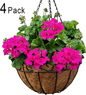 Best live hanging flower baskets Reviews