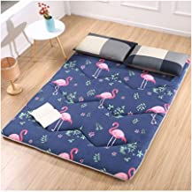 Tatami Mattress, Double Japanese Sleeping Pad, Soft Thicken Tatami Mattress Soft Futon Floor Mattress Thick 3cm,120x200cm/...