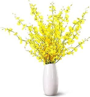 HaloVa Vase, Creative Fashion Ceramic Vase, Modern Decorative Flower Vase for Home Living Room Office and Centerpieces Decor, Middle