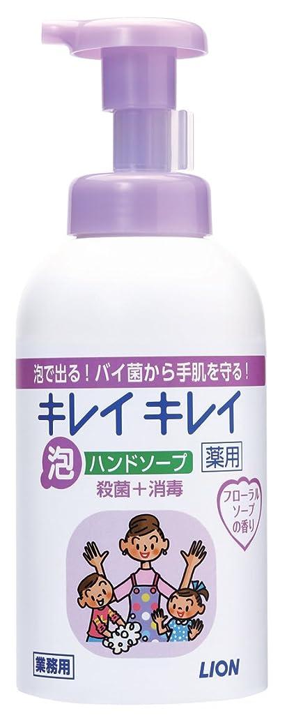 同封する軽減する衝突キレイキレイ 薬用泡ハンドソープ フローラルソープの香り 550ml