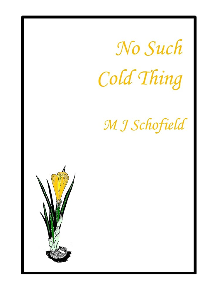 No Such Cold Thing (English Edition)