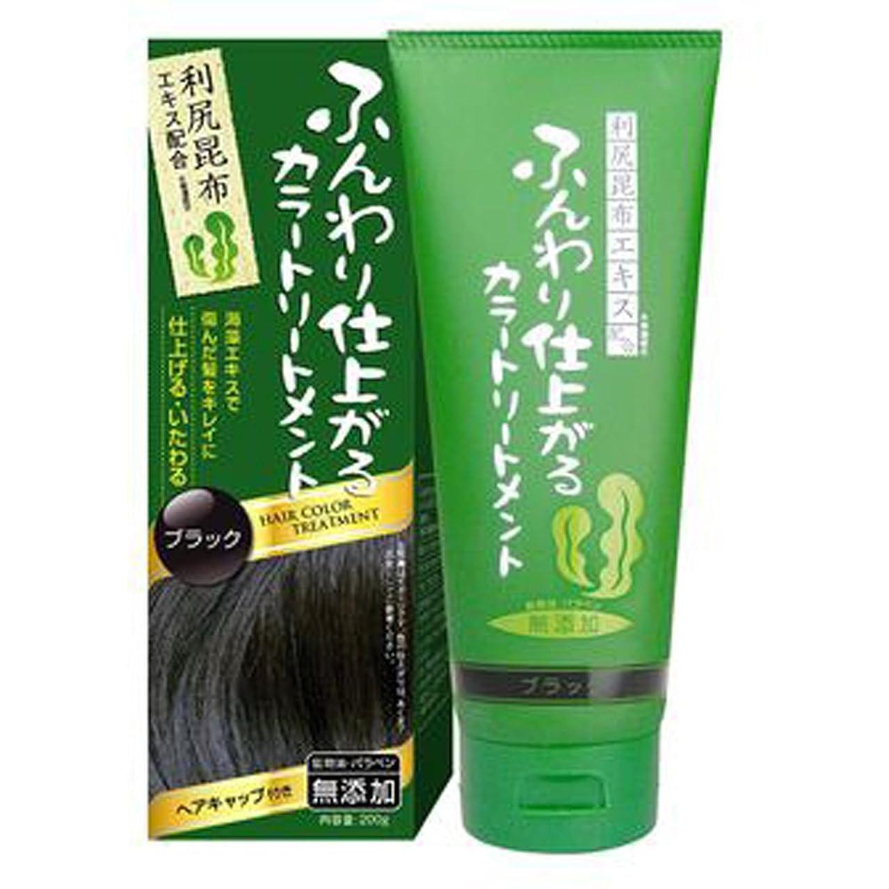 不明瞭洞窟主ふんわり仕上がるカラートリートメント 白髪 染め 保湿 利尻昆布エキス配合 ヘアカラー (200g ブラック) rishiri-haircolor-200g-blk