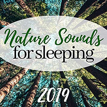 Nature Sounds for Sleeping 2019