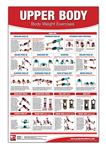Bodyweight Training Poster/Chart - Upper Body: Chest Training - No Equipment Workout - Body Weight Exercises - Shoulder Training Exercises - No ... Workout - Triceps Workout - Back Workout