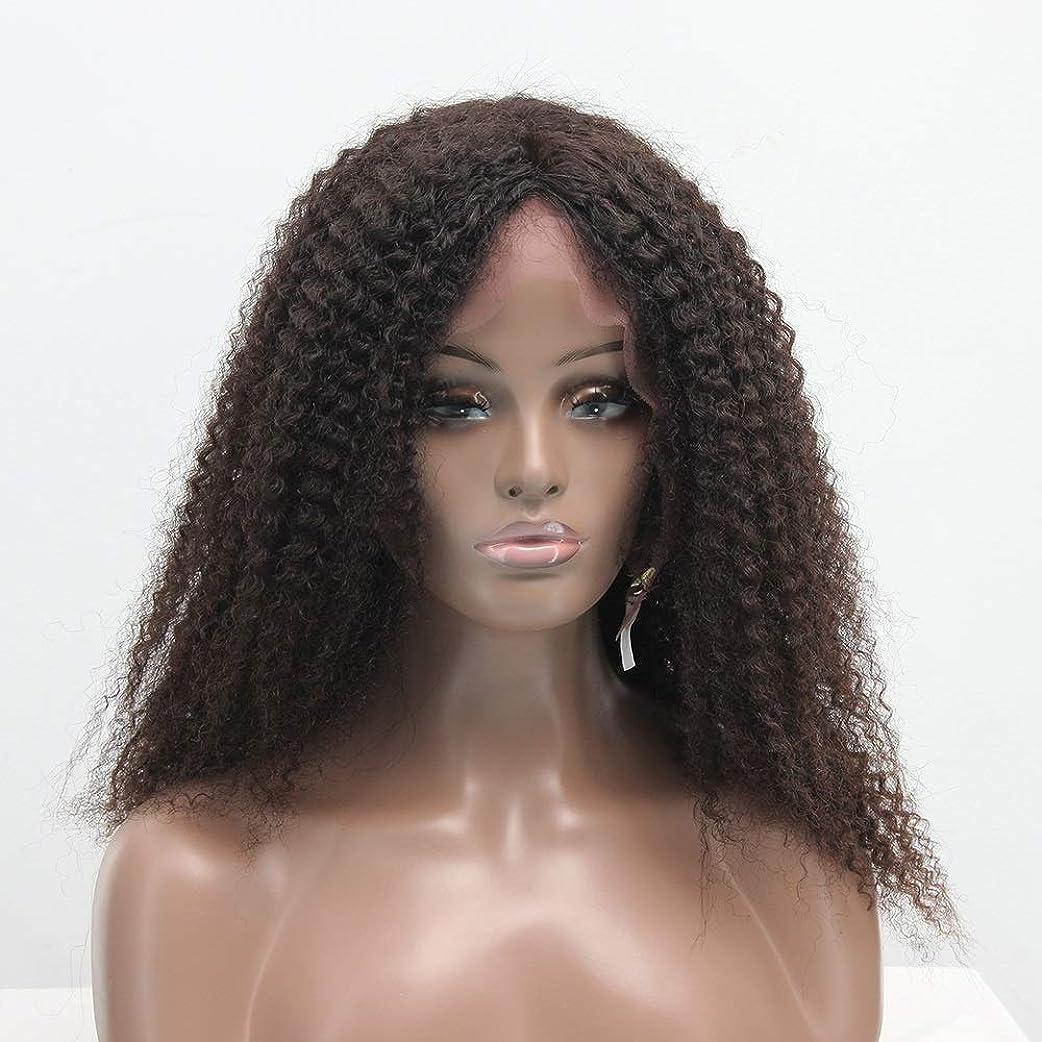 樫の木船外引き渡すZXF 本物の髪のフロントレースアフリカの小さなボリュームブラウンロングヘア女性かつらかつら髪かつら 美しい (Size : 16