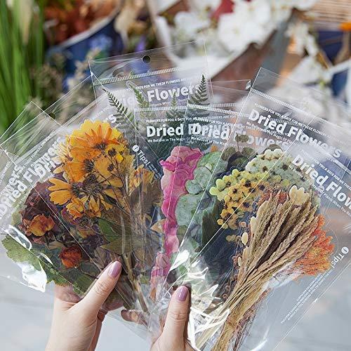 PMSMT 6 Piezas / 8 diseños Flores Deco Pegatinas Scrapbooking Estilo Bala Diario Juguete estética Escuela DIY papelería Pegatinas