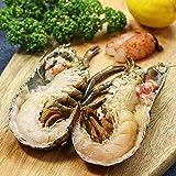 """ミートガイ オマール海老 ハーフカット 約350g """"Homard"""" A.K.A. Lobster Half-Cut Raw"""