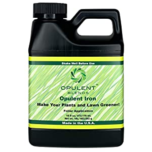 Opulent Iron | 16 oz. | Liquid Iron Fertilizer | 7.315% Iron | for Plants or Lawns | Fast Acting | Dark Green Lawn | Foliar Application