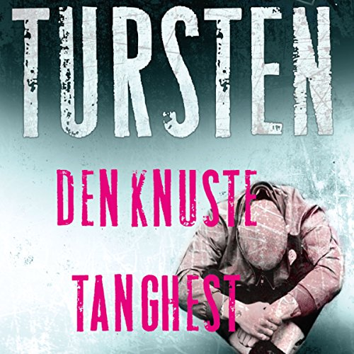 Den knuste tanghest Audiobook By Helene Tursten cover art