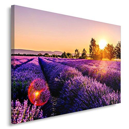 Feeby. Tableau Déco - 1 Partie - 80x120 cm, Impression sur Toile Décoration Murale Image Imprimée, Prairie, Lavande, Nature, Violet