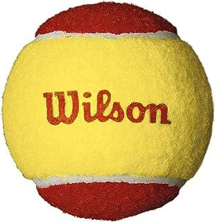 Wilson WRT137100 Starter Easy Ball-12 Pack